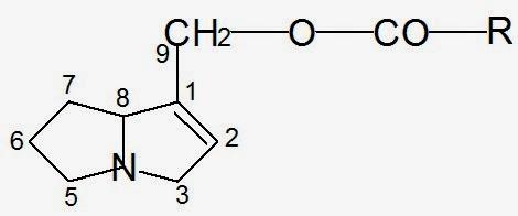 alcaloids