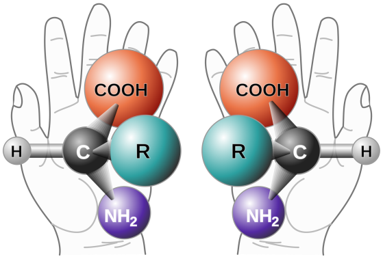 2000px-chirality_with_hands-svg